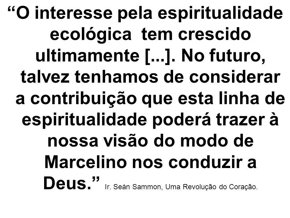 O interesse pela espiritualidade ecológica tem crescido ultimamente [